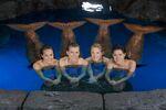 Mermaids in Moon Pool