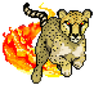 Quest cheetah
