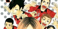 Rivals (Volume)