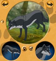 Darkstorm wolf 2