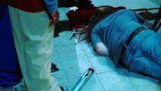 Michael murders Steve
