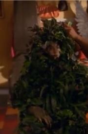 Plant lady pic