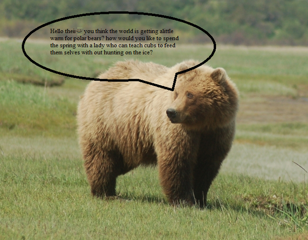 File:Proven fact, grizaly bears and polar bears are compatable..png