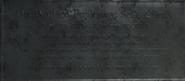 Wallace fujikawa bio