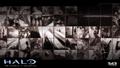 Thumbnail for version as of 15:36, September 6, 2015