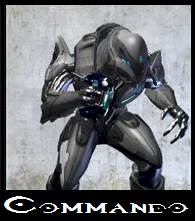 File:Elite Commando.png