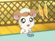 A-bunch-of-cuties-hamtaro-37220993-468-352