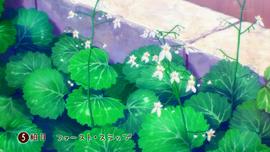 Hanayamata - 05 02.16