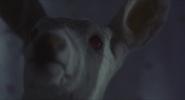 Hannibal.2001.86
