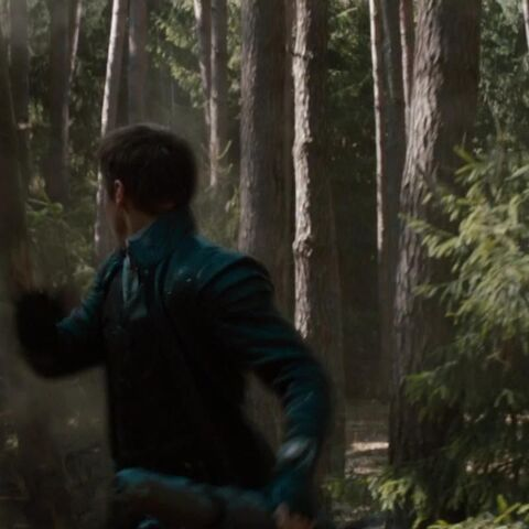 The Tall Witch attacks Hansel.