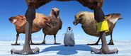 2006 happy feet 039