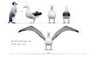 Hf albatross