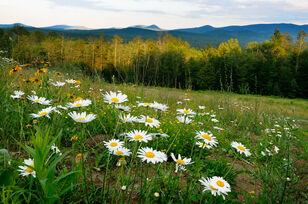 Adirondack-view