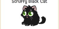 Scruffy Black Cat