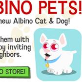 File:Happy-pets-albino-pets-notice-1283204968 168x168-1-.png