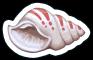 Item Shell