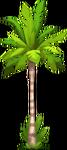 Seaside Decoration Palm Tree