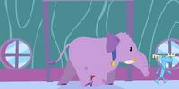 Lumpy's Elephant/Gallery