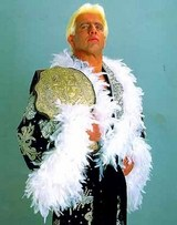 File:Ric as the WCW Champion.jpg
