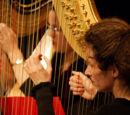 Harp Conferences and Festivals