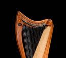 Allegro 26 by Dusty Strings