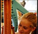 Beginner Harp Player's Toolkit