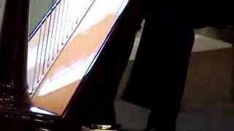 Aoyama Orpheus 46 Pedal Harp Demo