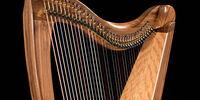 FH36S by Dusty Strings