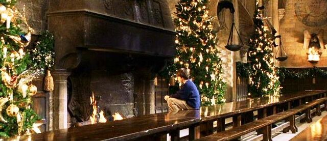 File:Harry Potter alone at the fireplace (Christmas 1991).JPG