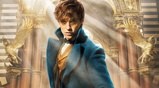 NewtFantasticBeasts