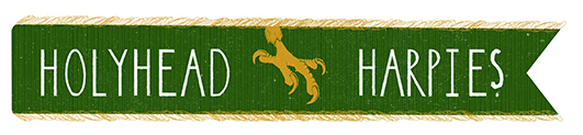 File:Holyhead Harpies Banner.png