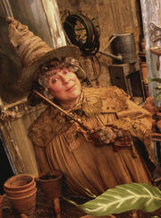 pomona sprout harry potter lexikon fandom powered by wikia. Black Bedroom Furniture Sets. Home Design Ideas