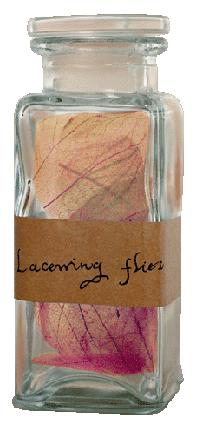 File:Stewed lacewing flies.jpg