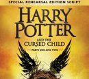 哈利·波特与被诅咒的孩子