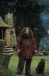 Hagrid l