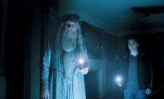 DumbledoreSlughornsHouse