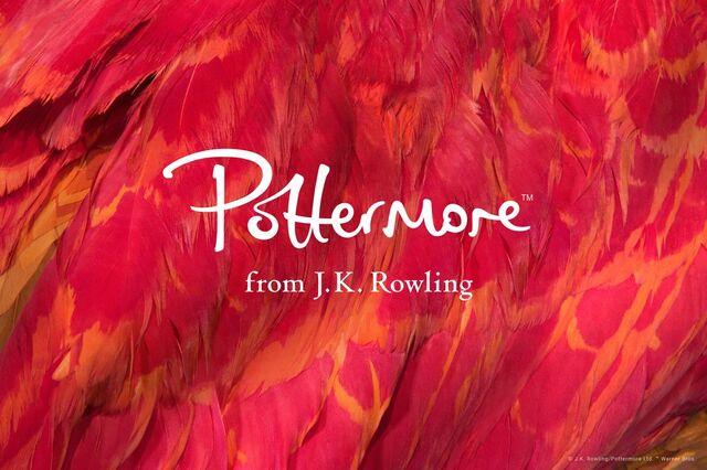 File:Potternew.jpg
