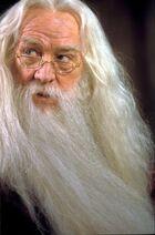 Dumbledorephilstone