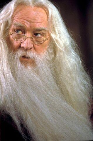 File:Dumbledorephilstone.jpg