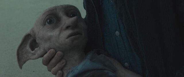 File:Dobby's Death - In Harry's arms.jpg