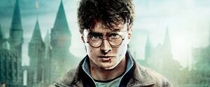 Harry potter 26112