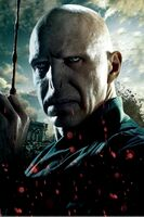 TDHp2 Textless Poster Voldemort close