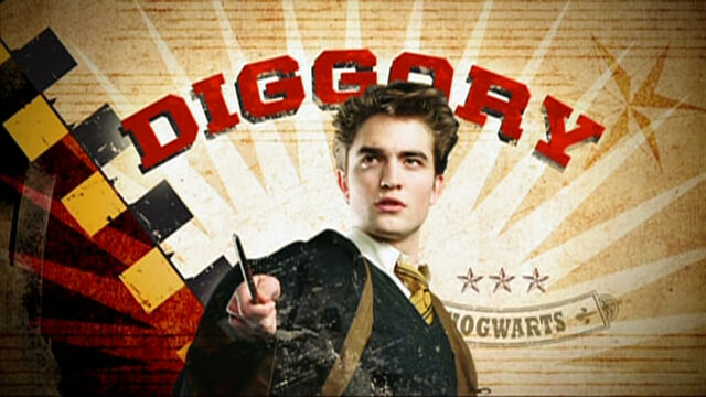 File:Cedric Diggory Triwizard tournament banner.jpg