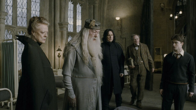 File:Hogwarts Professors with Harry at the Hospital Wing.JPG
