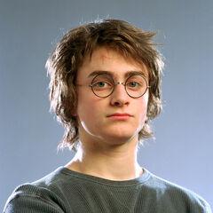 Гарри Поттер в форме чемпиона Турнира