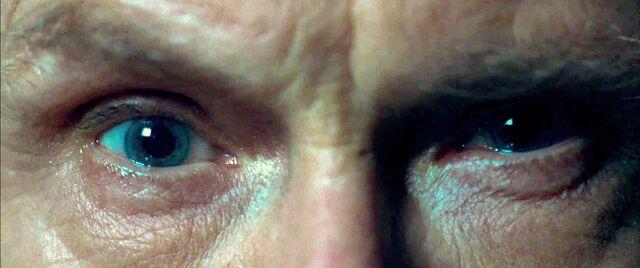 File:Eyesrufus.jpg