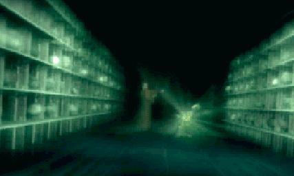 File:Screenshot 436 (Nintendo DS).png