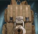 Laura Thorn's bag