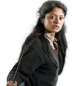 Padma Patil profile