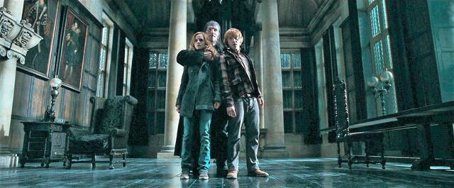 File:Greyback Hermione and Ron.jpg